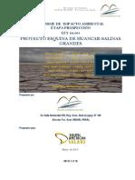 IIA Prosp_salinas grandes area esquina de huancar5comp1.pdf