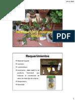 Propagacion de Plantas