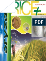 22nd September,2015 Daily Exclusive ORYZA Rice E-Newsletter by Riceplus Magazine