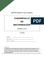 Plan Trabajo Verano SGA1 2014-2015