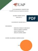 Fallo Sistema de Calidad Trabajo Final (2)