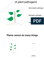 Types of Plant Pathogens