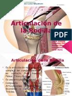presentacionderehabilitacionartrodilla-121029190141-phpapp02.pptx