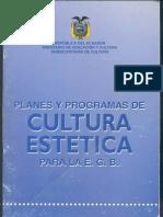 Plan Cultura Estética