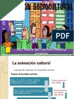 Animacion Socio Cultural