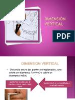 Dimension Vertical o Cl Us i On