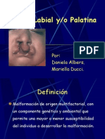 Fisura Labial y Palatina.ppt