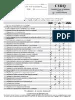 CERQ.pdf