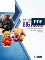 Friends of the Earth - Tiny Ingredients Big Risks ~ Nanomaterials Rapidly Entering Food and Farming - May 2014