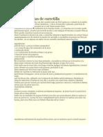 Yuquitas Fritas de Carretilla