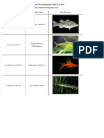 List of Freshwater Fish Beginning With L