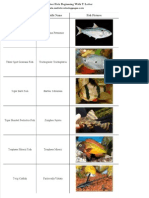 List of Freshwater Fish Beginning With T