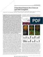 Human Liver Article