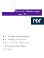 Delivery of Voice and Text Messages Over LTE-444444