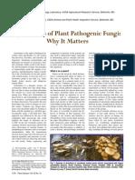 Systematics of Plant Pathogenic Fungi. Why It Matters