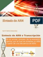 Genética, Síntesis y localización de ARN