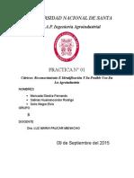 Practica-Nº1.docx