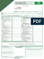 Formulario DIAN 110-2014