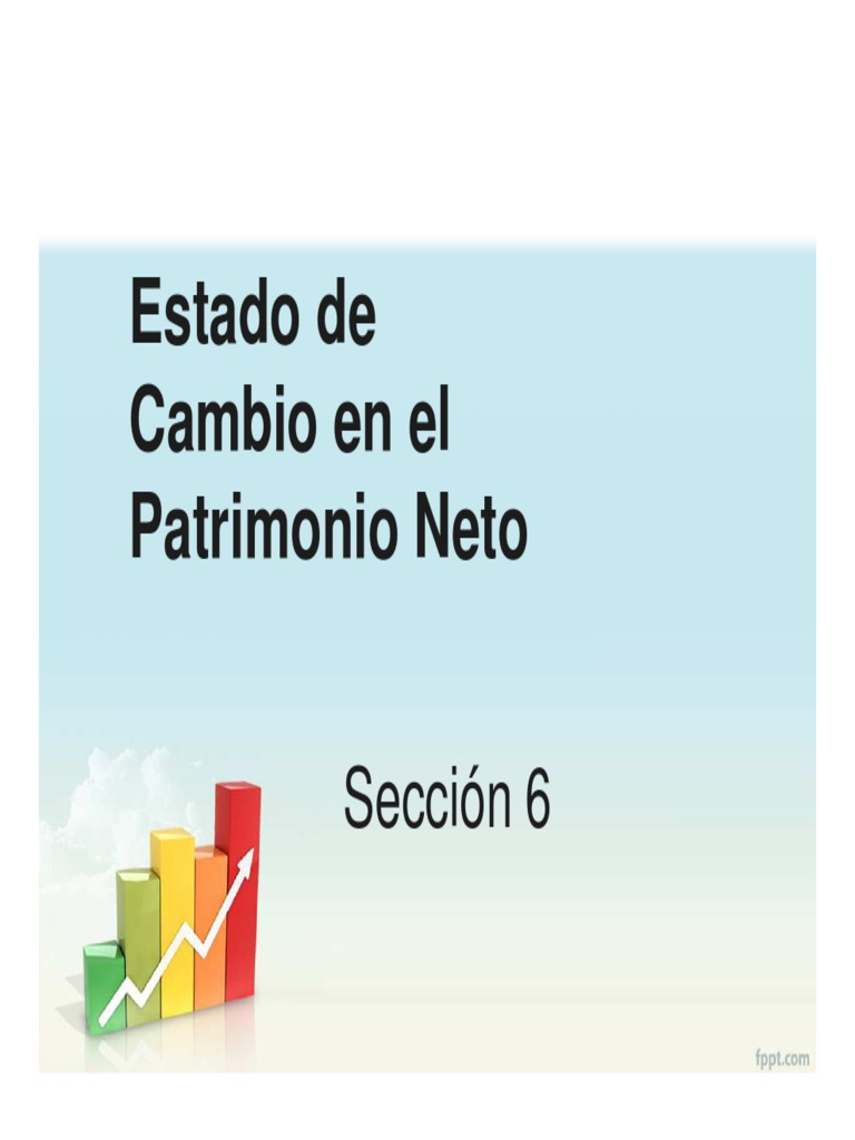 Estado del Patrimonio Neto (Sección 6).pdf