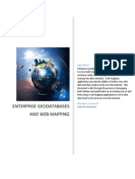 enerprise geodatabases and web mapping