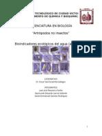 Bioindicadores