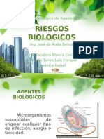 4.6 Riesgos Infectobiologicos2