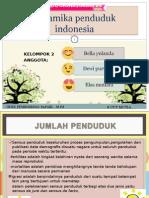 Dinamika Penduduk Indonesia