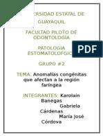 ANOMALIAS DE LA REGION FARINGEA