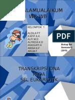 1 Transkripsi Dan Translasi DNA