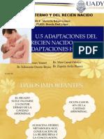 Adaptaciones hepáticas en el RN.