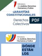 GarantiasConstitucionalesDDColectivos_ChristianPaula
