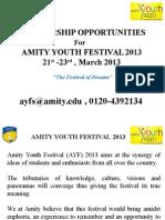 AYF 2013