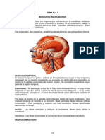 TEMA 7 Anatomía Humana