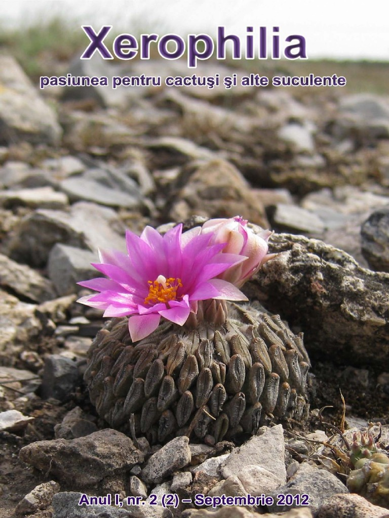 frunze de pete de helmintosporium)