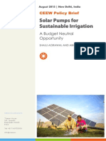 CEEW - Solar Pumps Brief 22Aug15
