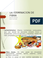 Determinacion de Fibra 1