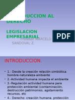 1 Introduccion Al Derecho 2015