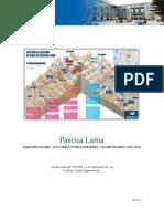 Informe Recurso Agua Proyecto Pascua Lama