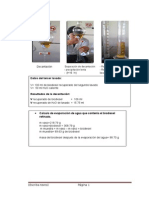 minimezcla en laboratorio (segunda parte).docx