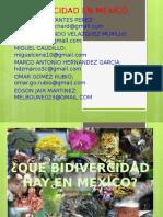 Biodivercidad en mexico