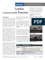 Advanced Lumbar Stabilization Exercises