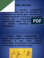 Aula de Neuro 2222 (1ª Aula)