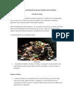 PROYECTO INNOVADOR DESECHOS ORGANICOS.docx