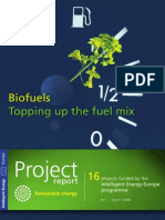 Biofuels - Topping up the fuel mix