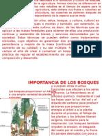 Resumen de Silvicultura 2015 II