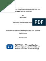 A STUDY ON SELECTION AND DESIGN OF NATURAL GAS GhatiProsjekt_AnaClara.pdf