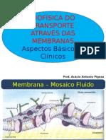 aula_transporte_de_membrana.ppt