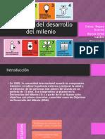Objetivos del milenio Diapositivas