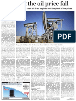 Decoding the Oil Price Fall