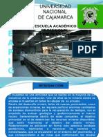 REGISTRO DEL TESTICO (ORIGINAL).pptx